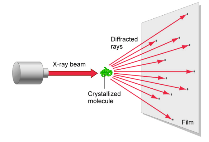 260h [licensed for non-commercial use only] / X Ray Crystallography